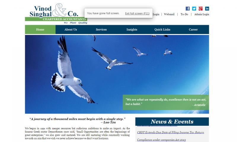 Vinod Singhal & Co. - website screenshot_3